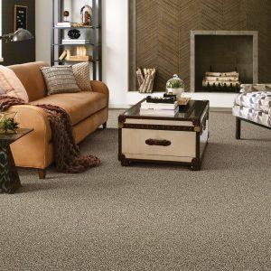 Living room Carpet floor | Dalton Wholesale Floors