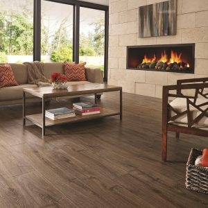 Beautiful view in living room from window   Dalton Wholesale Floors