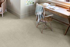 Grey Carpet | Dalton Wholesale Floors