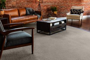 Living room interior | Dalton Wholesale Floors