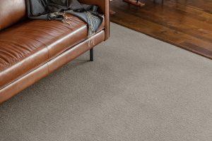 Carpet | Dalton Wholesale Floors