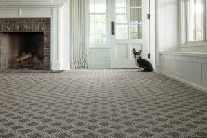 Dog sitting near door | Dalton Wholesale Floors